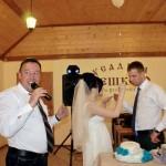 Проведение Свадеб — поющий ведущий Валерий и ди-джей Татьяна