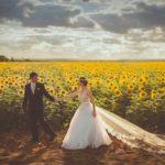 Правительство предложило разрешить россиянам выбирать дату и время брака